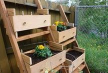 garden / always yearning to grow my own food.  here are some great ideas for maximizing the space you have and tips on how to and what to grow. / by Chocolate and Steel