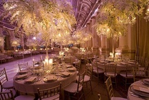 David Tutera/Weddings..... / by Ashlee Abalos