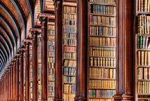 Bibliotecas espectaculares / Libraries