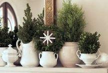 Christmas Decor & Crafts / by Kali Berg
