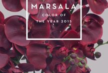 Marsala: Pantone Color of the year 2015 ❤️ / +++MUST have +++