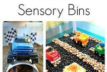 Speech: Fine Motor/Sensory