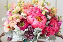 Wedding Flowers / by Caitlin Mary