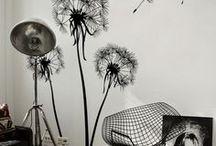 White, Grey & Black Interiors