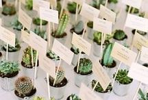 Wedding Favours / Fun wedding favours and ideas!
