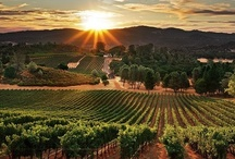 California Wine Country / Wineries, Restaurants, and Resorts