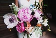 The Bride's Bouquet  / wedding bouquets