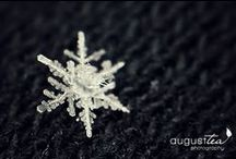 D E E | Snowflakes / http://www.ctpta.org/SANDY-HOOK-FUND.html / by Denise | The CreativiDee Workshop
