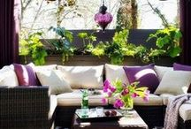 Outdoor Spiration / How to desighn your garden? / by Lior Idan
