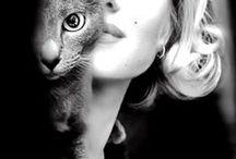 Marilyn / by Benny Suthiak
