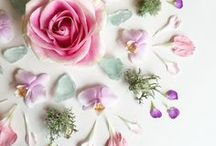 FLOWERS / Everything flowers: arrangements, roses, peonies... http://salwapetersen.com/