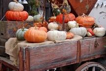 Fall ideas / by Cheryl Hinrichs