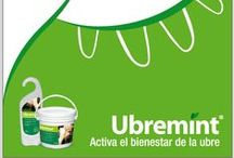 Nuestros Productos - Our Products / Agrovet Market Products