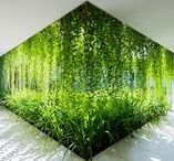 Green Urban Architecture / Beautiful green, botanical architecture from around the world.
