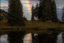 Over The Rainbow  / by Deb K