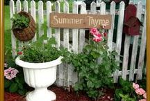 gardening and outside ideas / by Aleane