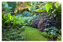 Scents - Garden / While others seek the sun in the summertime, I look for the shade when the temperatures rise! My inspiration comes in those dark, cool corners of the garden, a place of rest where the soft breezes blow and the greenery is lush.
