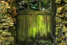 ~Shut the Damn Door / by Kelly De Laurentisღ