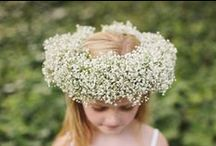 Inspiring { Gypsophilia } / by The Little Wedding Helper