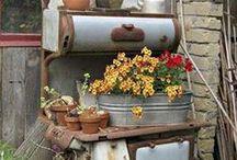 Gardening / by Lulu Garrett