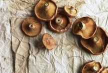 Mushrooms / sienet
