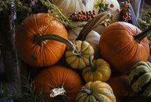 Autumn. Thanksgiving. / Thanksgiving. Fall. Decor. / by Pamela Fosse