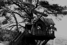 Tree Housing / by Monika Skye
