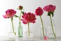 Florals and Design
