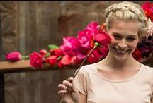 Fleurs de Mai Collection / by Shabby Apple