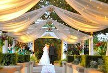 Wedding, lovestory / Мы делимся вдохновением от организации свадеб