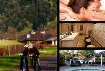 Napa Valley Love / There's so many incredible things to do in the Napa Valley. Here's a few of our favorites. / by Mount View Hotel & Spa