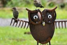 Give a Hoot!!  / All about owls.... / by Judy Ridings :)