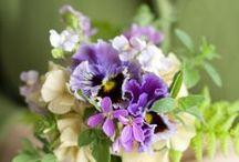 Flowers / by Helena Arneson