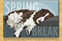 Springers / English Springer Spaniels (ESS) Adopt from ESRA & MAESSR For dog cookies, see also Cookies1: General / by em