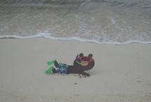 Barney Bear - World Traveler