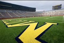 University of Michigan / Engage in the art of MAIZE & BLUE.