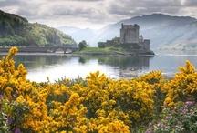 Scotland / by Katie Moore