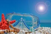 Beautiful scuba diving / Scuba Diving / by Diane's