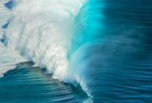 All shades of blue / Love of everything blue!