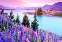 colors fantastico ! / by Darling Nikki