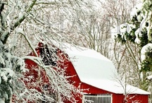 Winter Wonderland / pictures of snow covered....everything / by Beverly Cabaday