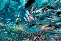 Aquaman, King of Atlantis / Celebrating the once and future king of Atlantis.