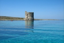 Sardinia / These are not my picture but they represent a part of the place where I live, Sardinia.