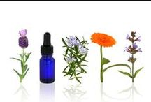 Obsessions - Essential living / Essential oils for healthy living
