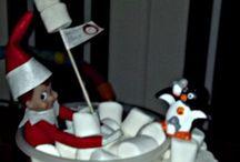 Elf on the Shelf Ideas / Fun Elf on the Shelf ideas, elaborate and easy, anyone can do these ideas!