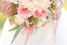 Flores - Flowers / #Flores que nos gustan, que nos #Inspiran, #Fotos que hacemos y #Fotografias que vemos.