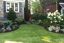 Yard/Garden / by Stephanie Jackson