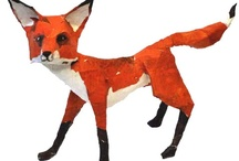 Fox / by Myakka Ltd