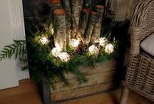 Holiday decor / by Beth Nicole