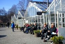 Drivhuse / Greenhouses / Drivhuse / Greenhouses